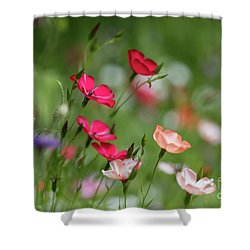 Wildflowers Meadow Shower Curtain