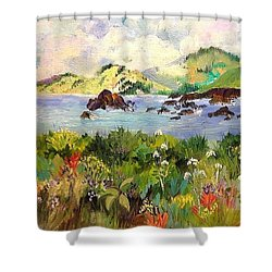 Wildflowers On Sonoma Coast Shower Curtain