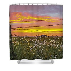 Wildflowers On The Ranch Shower Curtain