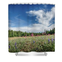 Wildflowers Reach For The Sky Shower Curtain