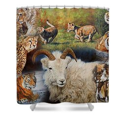 Wildlife Collage Shower Curtain by David Stribbling
