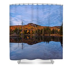 Wildlife Pond Autumn Reflection Shower Curtain