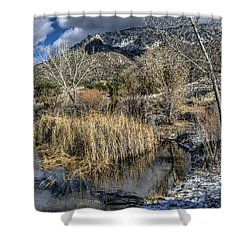 Wildlife Water Hole Shower Curtain by Alan Toepfer