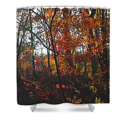 Wildwood Missouri Shower Curtain