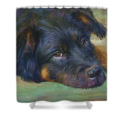 Will You Play With Me? Shower Curtain by Angela A Stanton