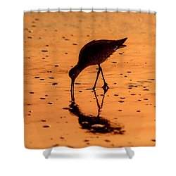 Shower Curtain featuring the photograph Willet On Sunrise Surf by Steven Sparks