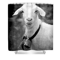 Willhelm Of The Alps Shower Curtain