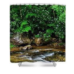 Williams River And Rhododdendron Shower Curtain