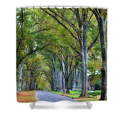 Willow Oak Trees Shower Curtain