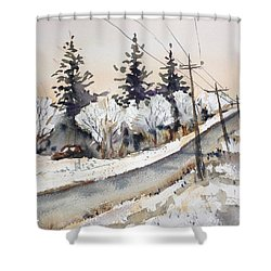 Willow Springs Road Shower Curtain