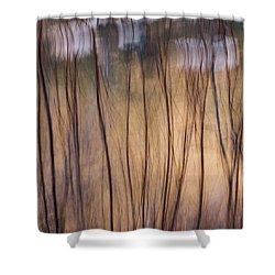 Willows In Winter Shower Curtain