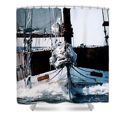 Wilma Lee Shower Curtain by Skip Willits