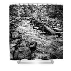 Shower Curtain featuring the photograph Wilson Creek 2 by Alan Raasch