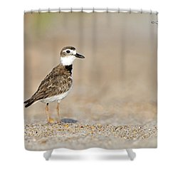 Wilson Shower Curtain