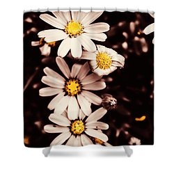 Wilting And Blooming Floral Daisies Shower Curtain
