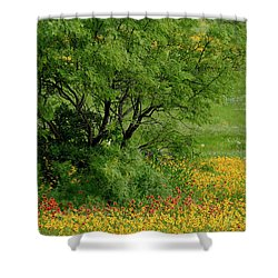 Wind Blown Palette Shower Curtain