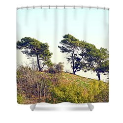 Wind Blown Trees Shower Curtain