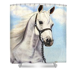 Wind Dancer Shower Curtain