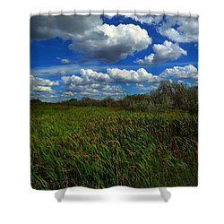 Wind In The Cattails Shower Curtain by Annie Gibbons