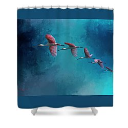 Wind Surfing Shower Curtain