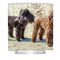 Windblown Beach Bums Shower Curtain