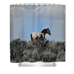 Windblown Shower Curtain