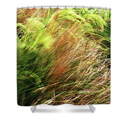 Windblown Grasses Shower Curtain