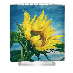 Shower Curtain featuring the photograph Windblown  by Karen Stahlros