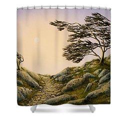 Windblown Warriors Shower Curtain by Frank Wilson