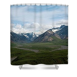 Winding Water Ways Shower Curtain