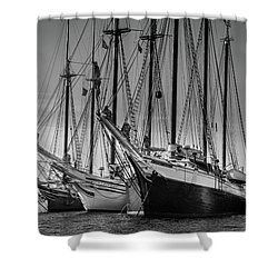 Windjammer Fleet Shower Curtain