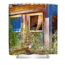 Shower Curtain featuring the photograph Window 2 by Susan Kinney