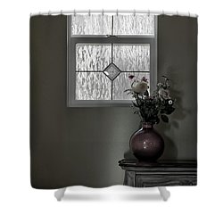 Window And Flowers In Vase Shower Curtain