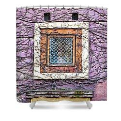 Window And Vines - Prague Shower Curtain