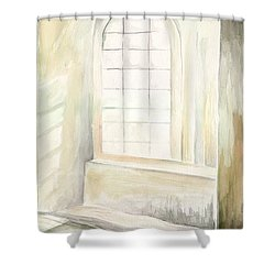 Shower Curtain featuring the painting Window by Darren Cannell