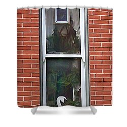 Shower Curtain featuring the photograph Window Dressing by Brian Wallace