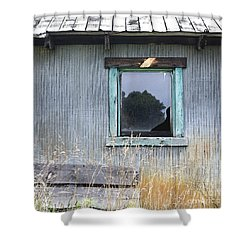 Window Framed In Aqua Shower Curtain by Glennis Siverson