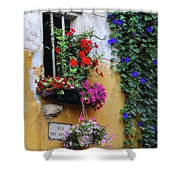 Window Garden In Arles France Shower Curtain by Dave Mills