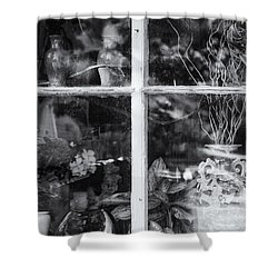 Window In Black And White Shower Curtain by Tom Singleton