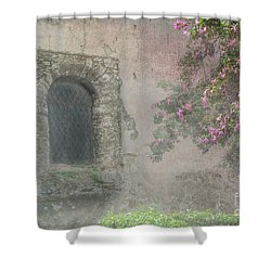 Window In The Wall Shower Curtain