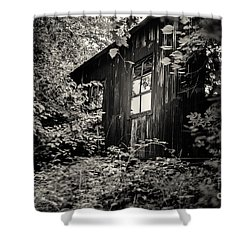 Window In The Woods Shower Curtain by Randall  Cogle