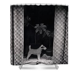 Window Scene Shower Curtain by Charles Stuart