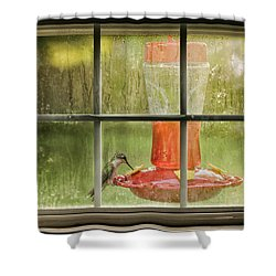 Window Sweet Shower Curtain by Denis Lemay