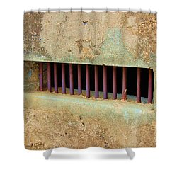 Window To The World Shower Curtain by Debbi Granruth