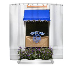 Window Trimming Shower Curtain