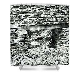 Window View Of Sope Creek In Black And White Shower Curtain