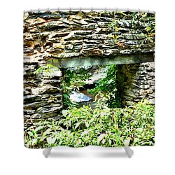 Window View Of Sope Creek Shower Curtain