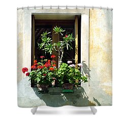 Shower Curtain featuring the photograph Window With A Tree by Donna Corless