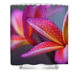 Shower Curtain featuring the photograph Windows Into Nature by Sharon Mau