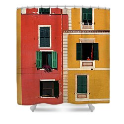 Windows Shower Curtain by Marji Lang